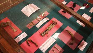 Anthropology Artifacts